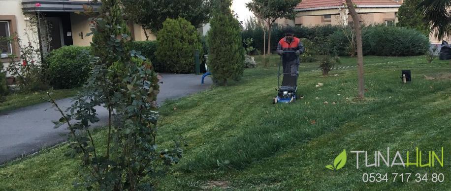 Bahçe Bakmı Çim Biçme
