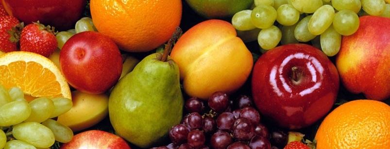Meyve Ağaçların Ekim Budaması, Meyve Fidanlarını Budama, Meyve Ağaçları Dal Budaması, Fidanları Budama Zamanları, meyve ağaçlarında dikim budaması