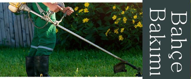 bahçe bakımları nasıl yapılır