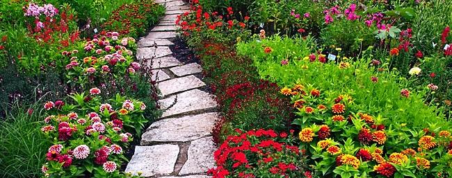Peyzaj Alanında Hangi Bitkiler Kullanılır, Peyzaj Alanında En Çok Kıllanılan Bitkiler, Peyzaj Uygulamada Kullanılan Bitki Çeşitleri, Yeni Bahçe Yaparken Kullanılan Bitkiler, Peyzajda kullanılan bitkiler, Peyzaj alanı bitki çeşidi, Peyzaj alanında kullanılan çiçek adları