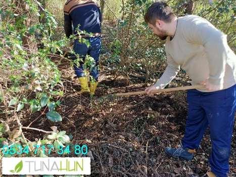 bahçe bakımı hizmetleri İstanbul