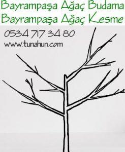 Bayrampaşa Ağaç Budama Ustası