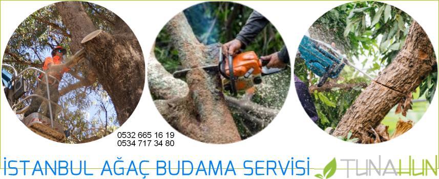 ağaç budama yapan firma telefonları