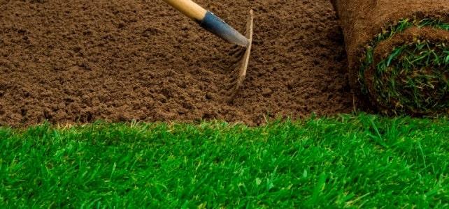 Kadıköy rulo çim yapan firma, Kadıköy hazır çim şirketi,